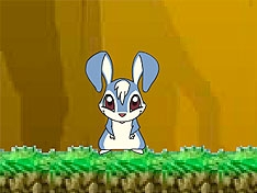 Игра Приключения кролика Кико