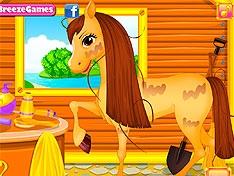 Белль ухаживает за лошадью