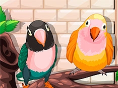 Игра Мои милые птички
