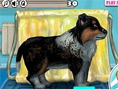 Игра Сильно грязный щенок