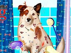Игра Грязная собака точка ком